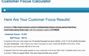 Customer Focus Calculator